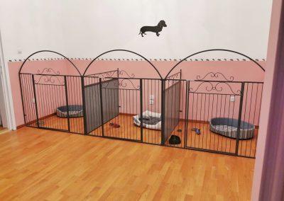 Hotel za pse Beograd prostorija za srednje pse